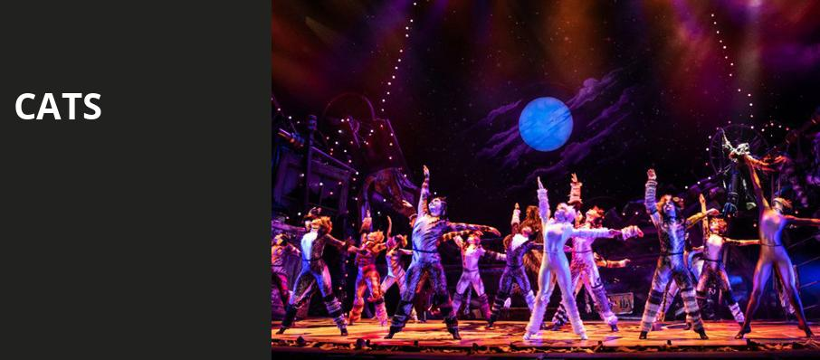 Cats, Mortensen Hall Bushnell Theatre, Hartford