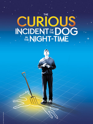 The Curious Incident of the Dog in the Night Time, Mortensen Hall Bushnell Theatre, Hartford